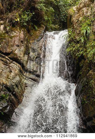 La Mina Falls In El Yunque National Rainforest
