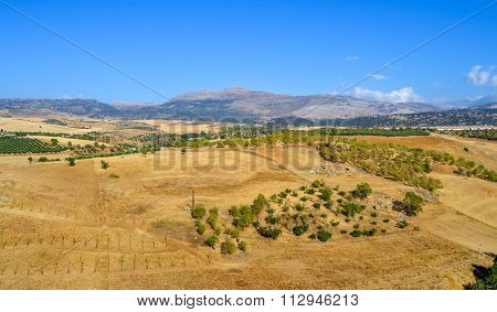 Panoramic View Of Summer Andalusian Landscape Near Ronda, Province Of Malaga, Spain
