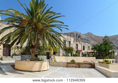 Beautiful palm at Moni Preveli monastery , located on Crete island