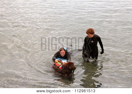 Rescuers Are Participating In A Training Cource With Their Service Dogs, Lake Geneva