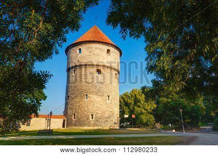 Medieval Tower Kiek-in-de-Kok In Park On Hill Toompea in Tallinn
