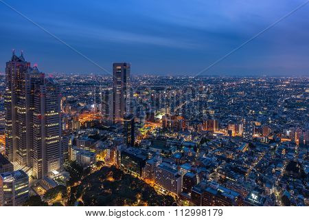 Tokyo Night View From Metropolitan Government Offices
