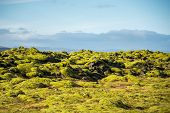 Eldhraun lava field (moss cover on lava rock) glacier and mountain in Vatnajokull National Park beautiful volcanic landscape of Iceland poster
