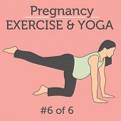 Lady doing her Pregnancy Exercise and Yoga Workouts poster