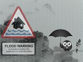 Bird with flood warning sign against a dark cloudy skyscape poster