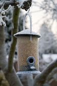 A frozen bird feeder filled with seeds and nuts, suspended in a tree, covered with ice in the winter. poster