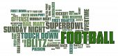 American Football Word Cloud on a white background poster