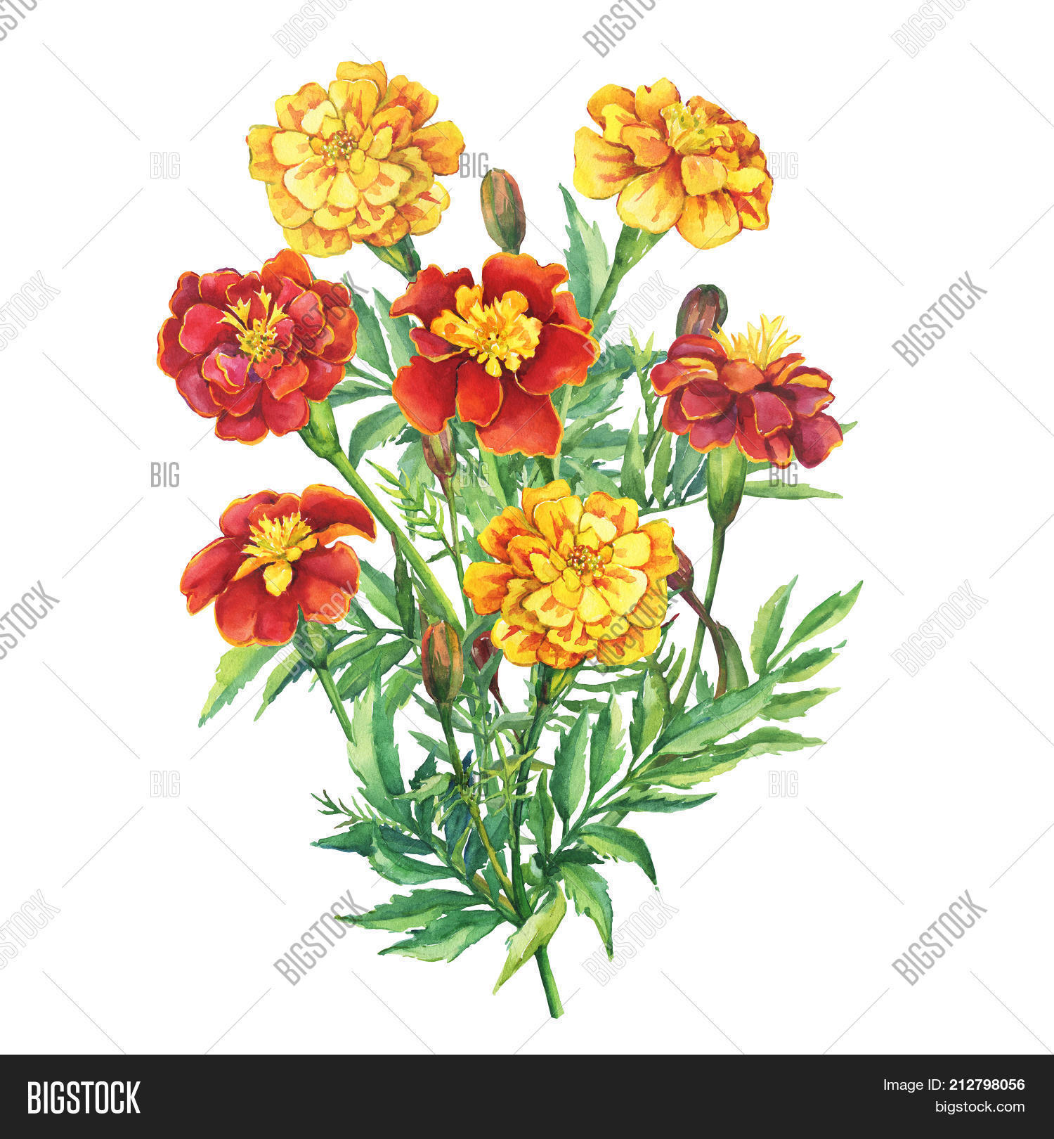 Bouquet Flowers Image Photo Free Trial Bigstock