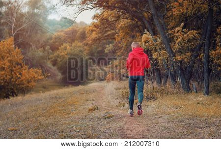 Athletic Jogger In A Black Runs On The Colorful Yellow Autumnal Forest