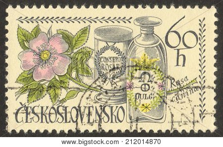 MOSCOW RUSSIA - CIRCA OCTOBER 2017: a stamp printed in CZECHOSLOVAKIA shows Apothecary Jars and Dog rose the series