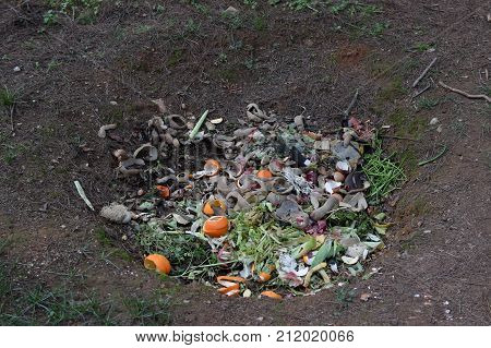 Compost ground hole full of organic biodegradable green waste. Pit composting.