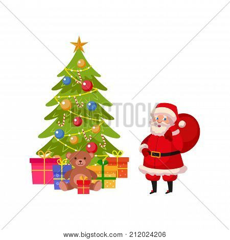 Funny Santa Claus and beautiful Christmas tree with many presents, cartoon vector illustration isolated on white background. Christmas elements - funny Santa and many presents under Xmas tree