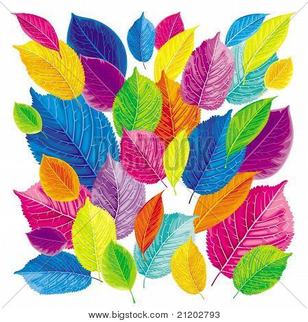 Brightly colored leaves background