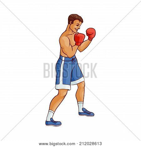 vector cartoon muscular strong handsome man bare torso and chest in boxing stand with red box gloves ready to fight in blue shorts. Isolated illustration on a white background.