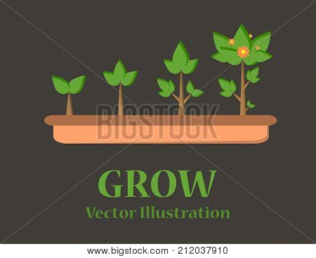 Infographic of planting tree. Seedling gardening plant. Seeds sprout in ground. Sprout, plant, tree growing agriculture icons. Vector illustration isolated