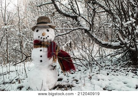A cheerful snowman with a hat and scarf. Snowman in the park