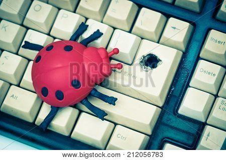 Software bug / A ladybug on computer keyboard with a hole