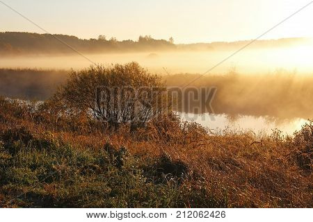 Fantastic foggy morning in the sunrise sunlight. Unusual and picturesque scene. Beauty world. Misty nature landscape on early autumn morning. Russia.