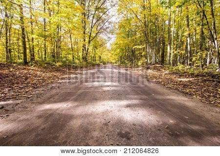Fall Color Road Trip. Rural tree lined road surrounded by beautiful lush autumn foliage in the Hiawatha National Forest of the Upper Peninsula of Michigan.