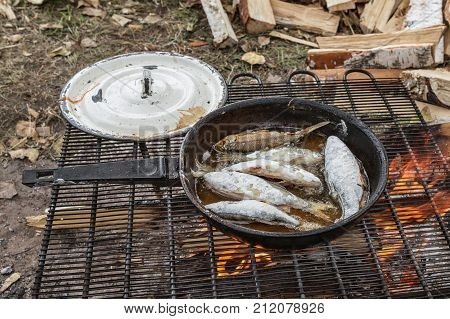 fish is fried on a bonfire .