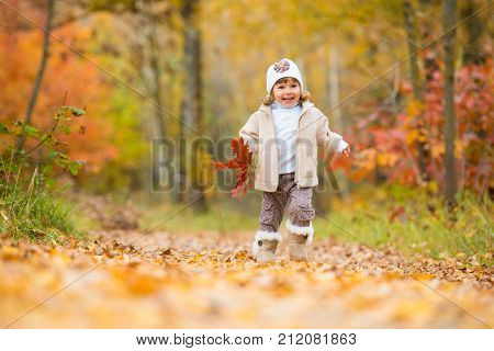 Autumn time happy little baby the girl walks along the path with a bouquet of autumn leaves laughs and plays in the autumn on the nature walking outdoors.