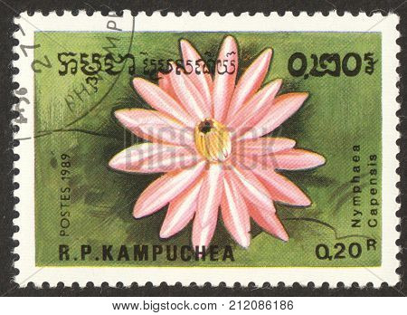 MOSCOW RUSSIA - CIRCA OCTOBER 2017: a post stamp printed in CAMBODIA shows a flower Nymphaea Capensis the series