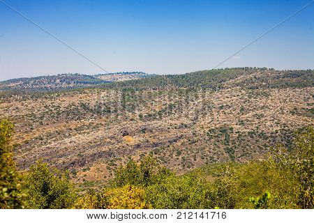 Hill landscape with desert-like terrace levels and forest around Jerusalem