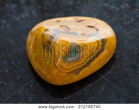 Tumbled Leopard Skin Jasper Gemstone On Dark