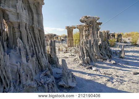 Abstract rock tower. Tufa formation. Mono Lake, California