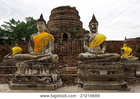 Aligned statues of Buddha