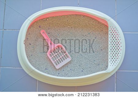 Cat Litter or cat sand with cat litter scoop in little box.