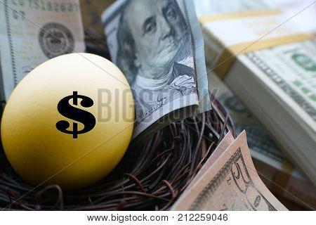 Golden Money Egg Surrounded By Stacks Of Money