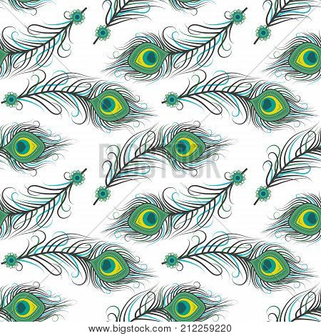 Vector illustration seamless pattern of peacock feathers. Background with feathers