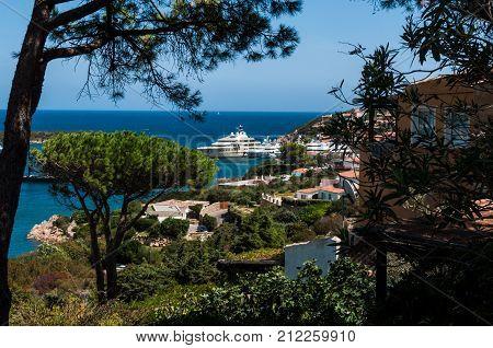 PORTO CERVO ITALY- July 2017 - Coastline promenade with pine trees and tourquise clear water at Porto Cervo town. Porto Cervo is capital of Costa Smeralda Sardinia Italy