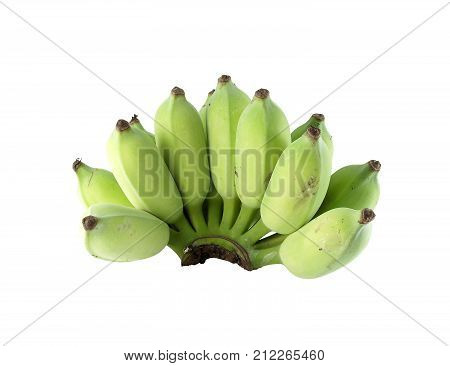 close up green raw banana isolated on white background, raw tropical fruits used as asian food ingredients and herbs