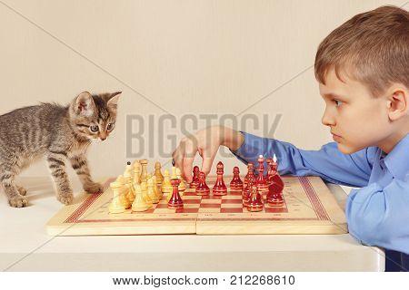 Little grandmaster with a cute kitten plays chess.