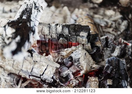 Remains Of Wood Coal And Ashes After The Combustion Of Firewood.burned Charcoal And Ash From Fire.co