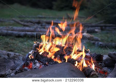 Evening firecamp in the forest. Woods on background.