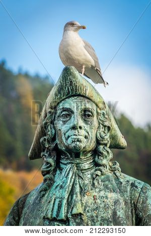 Seagull sitting on the statue of writer, essayist, philosopher and historian Baron Ludvig Holberg,  Bergen, Norway