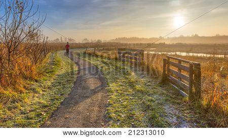 Recreation Track In Misty Autumnal Polder