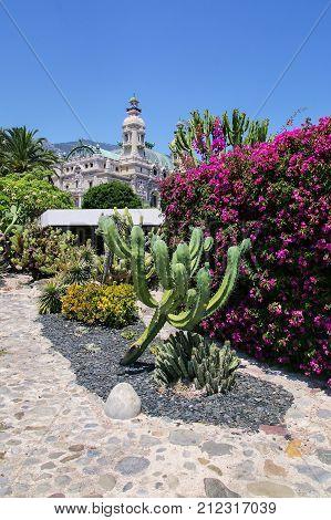Garden Near Monte Carlo Opera House In Monaco.