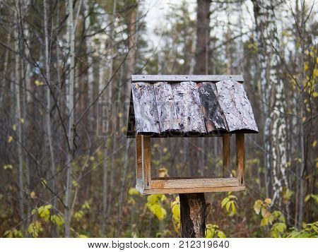 A birdhouse in the forest. A picture of a birdhouse on a tree.