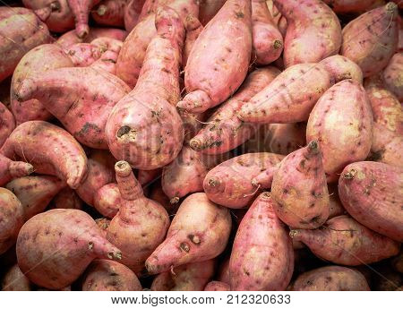 Fresh yam background. Yam sale in the market