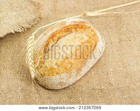 Whole loaf of the wheat sourdough hearth bread with bran and stem of ripe wheat with ear on a sackcloth