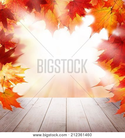 Red Autumn Maple Leaves White Empty Wooden Table and Sunlight Outdoor. Fall Background Template Mock up for Autumn Product