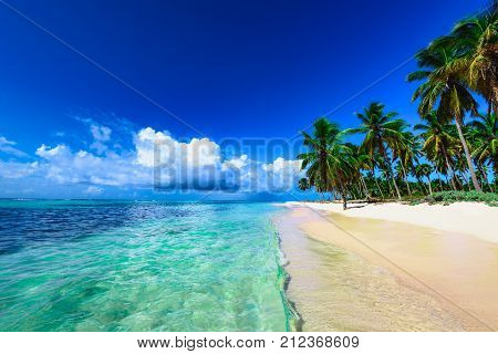 Resort Beach Palm Tree Sea