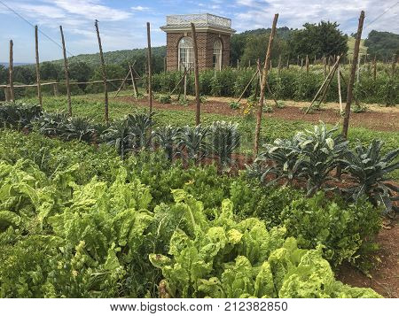 vintage vegetable garden at Monticello plantation, Virginia