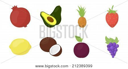 Different fruits icons in set collection for design. Fruits and vitamins vector symbol stock  illustration.