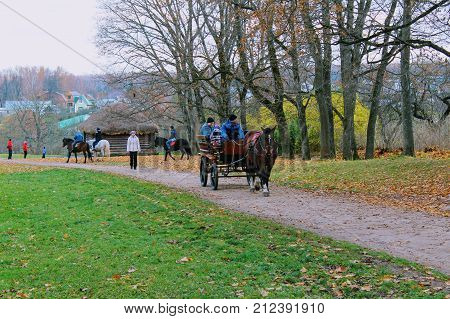 Horse walks in the park in the estate of Count Leo Tolstoy in Yasnaya Polyana in October 2017.