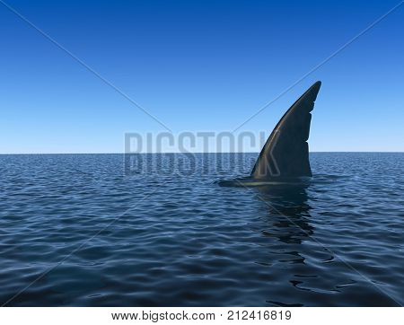 Shark fin over sea water surface. Danger concept. 3D rendering.
